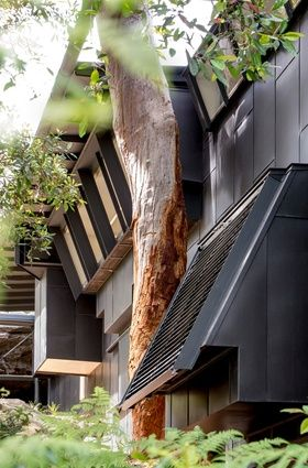 The Donaldson House by Glenn Murcutt is located in a high risk fire zone and is made of robust materials such as zinc cladding.