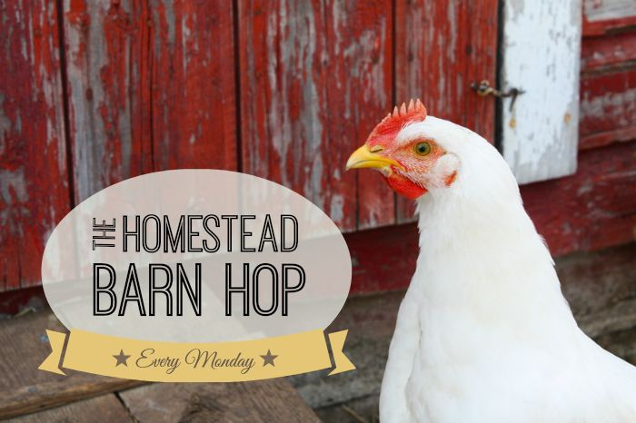 Come on over and check out the www.oneashplantation.blogspot.com posts every Monday on Homestead Barn Hop #150   The Prairie Homestead