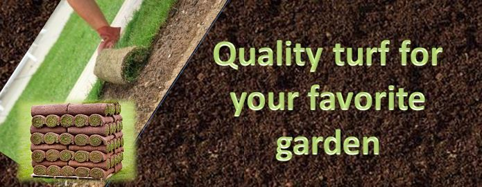 If you have need of quality turf for a topsoil of your garden? You can purchase it from Cart Turf Supplies. We are supplier of turf in the UK, and providing their services in Leicester, Coventry and more areas in the UK.