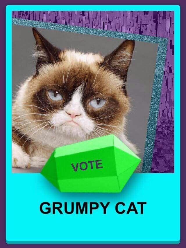 78 best images about grumpy cat on pinterest