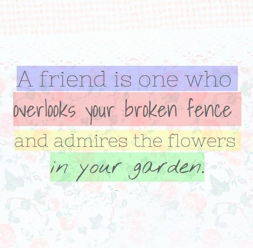 Funny Quotes About Friendship And Love: A Friend Is One Who Overlooks Your