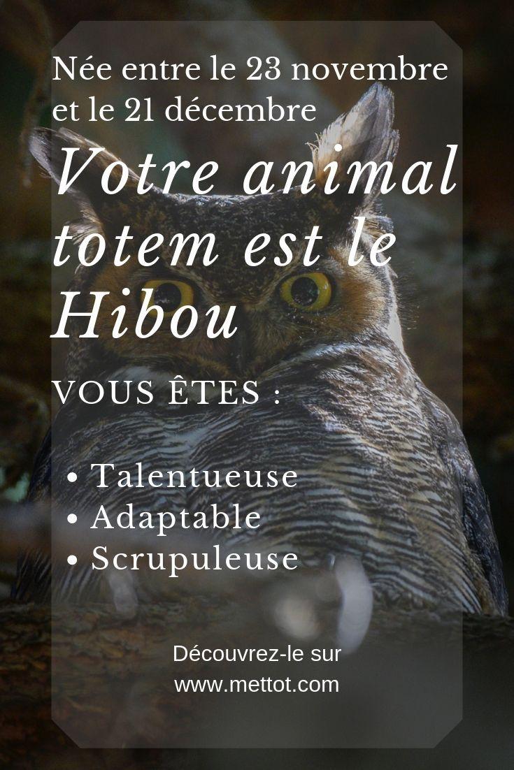 Animal Totem Hibou 23 Novembre 21 Decembre Animaux Totems