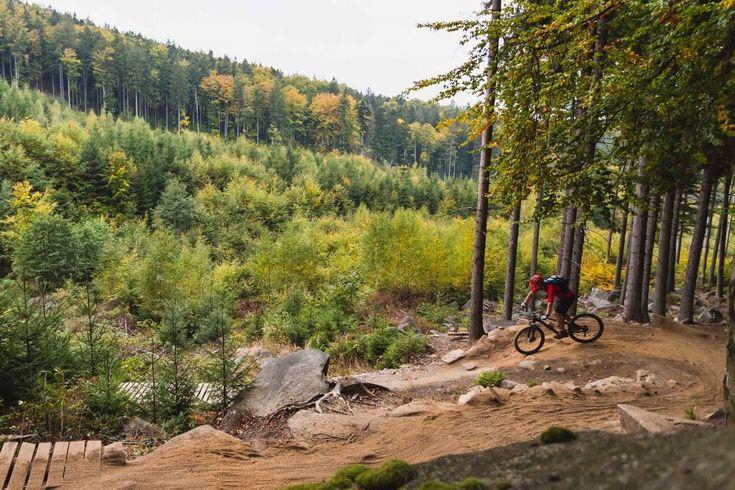 Como ya podrás imaginar, no todas las bicicletas de montaña son iguales. Cada una de ellas presenta diferentes características y componentes .