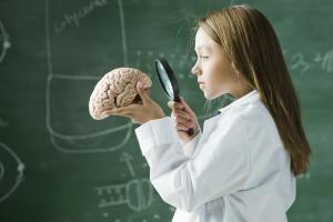 Wie sich das Gehirn eines Kindes entwickelt, hängt vom Einkommen und Bildungsstand der Eltern ab