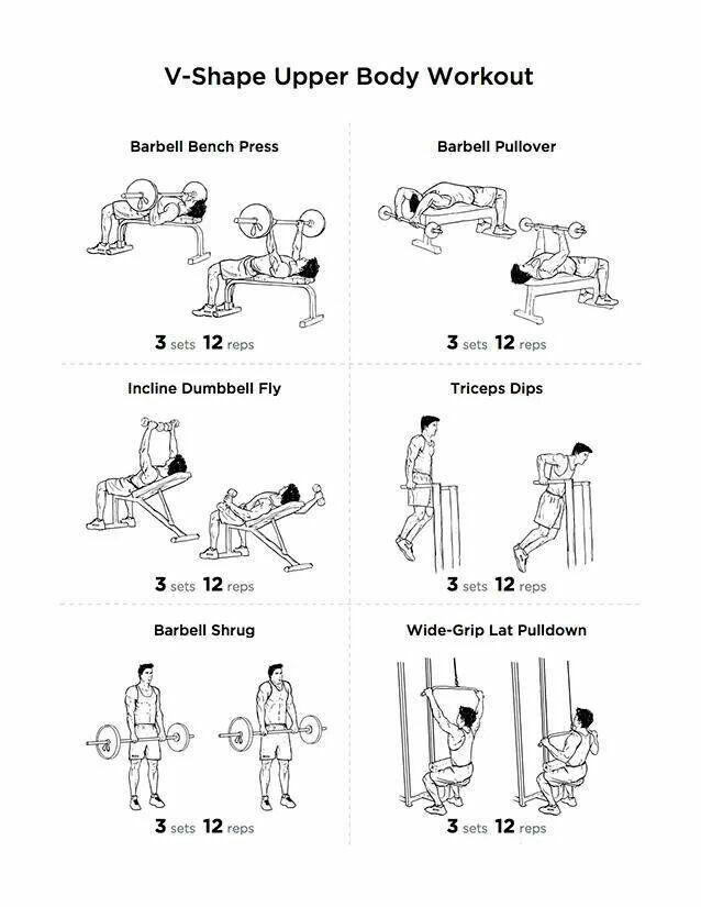 circuit training sheet