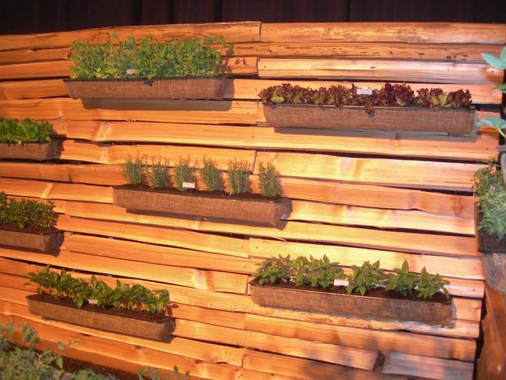 Vertical herb garden on fence