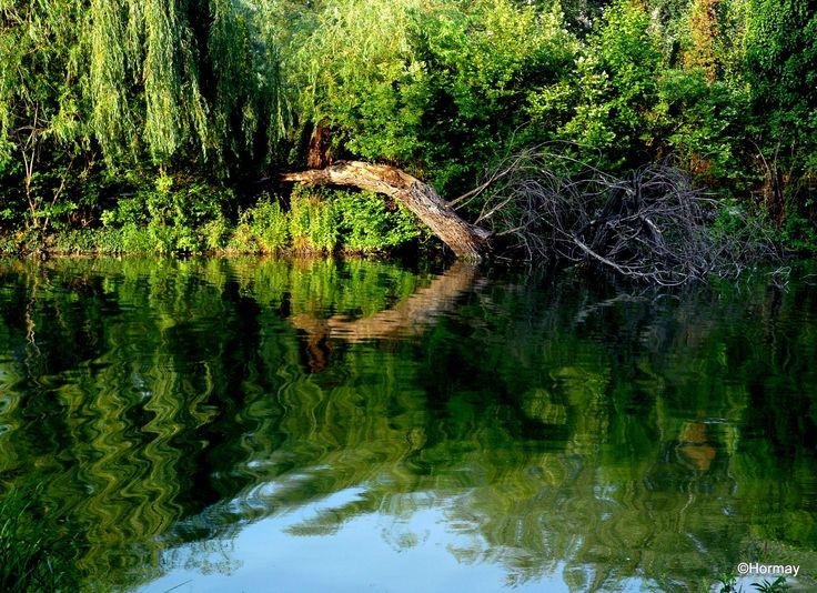 lake -detail