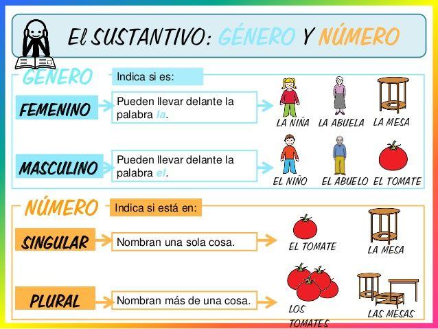 Recursos interactivos online sobre el sustantivo clases, género y número para niños de 6to grado de educación primaria.