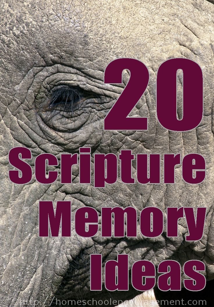 Memorizing the Books of the Bible in Minutes - How to Memorize