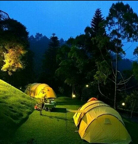 Premium Camping, Puncak Pass Resort