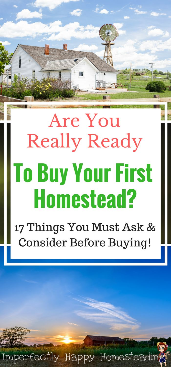 Are you really ready to buy your first homestead? Moving from backyard or urban farmer to property is a huge change. Questions and Considerations before you make the leap!