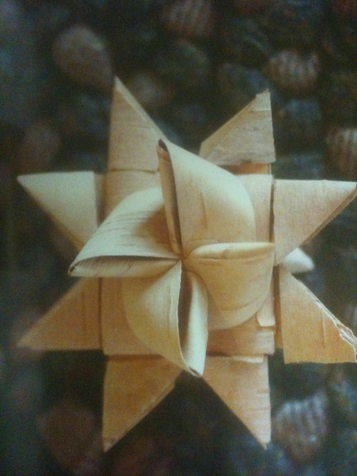 birch bark star