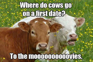 18 Jokes That Will Definitely Make You Groan  Cute ag-related jokes that could be used to spice up the classroom!
