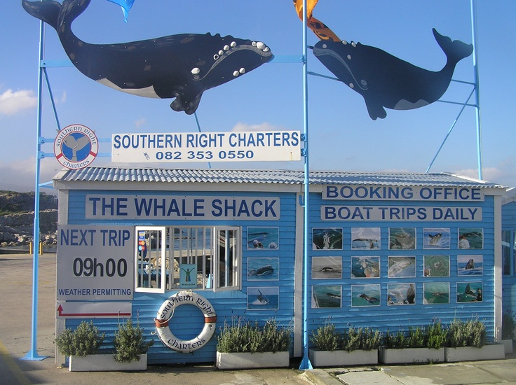 KENNEDYS BEACH VILLA invite you to make use of our service provider, Southern Right Charters, for watching the Hermanus Whales this season!