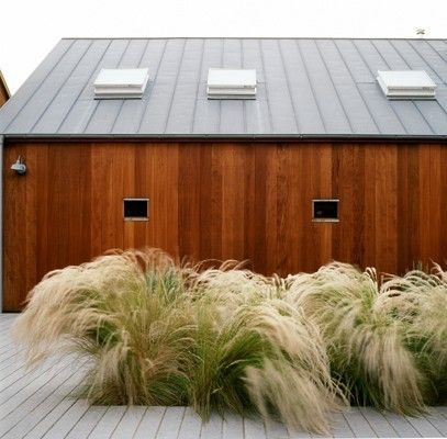 Soft grasses (probably Stipa tenuissima) would waft wonderfully in a windy site.