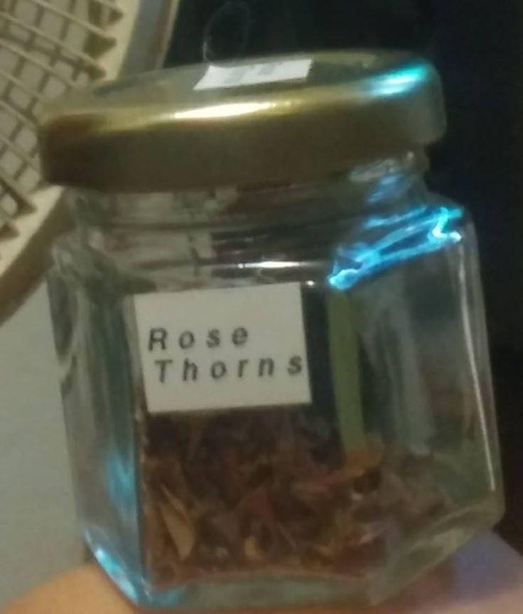 25 best Rose thorns ideas on Pinterest