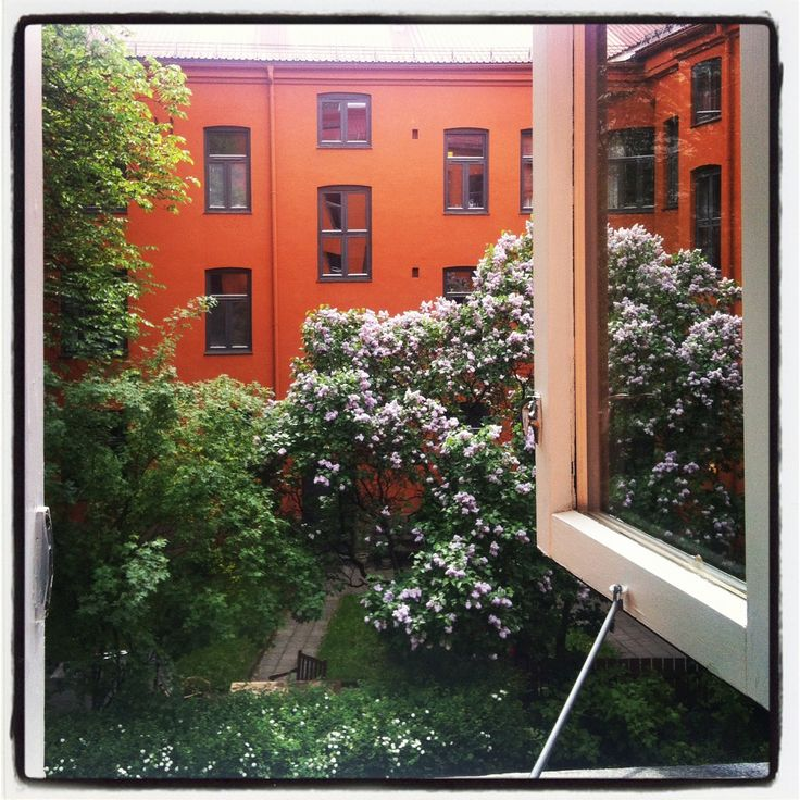 backyard at tøyen, oslo.                    photo: jade j. nordahl.