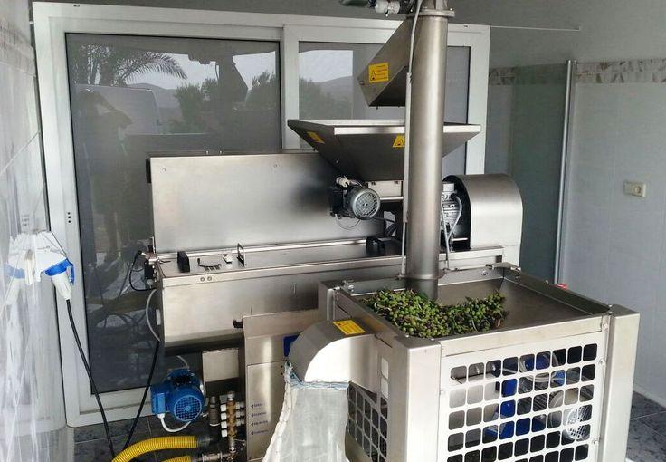 Olimio 80 Plus + DLE Baby instalada en Almazara Mariya Kirilova (Tuineje - Fuerteventura - Islas Canarias)