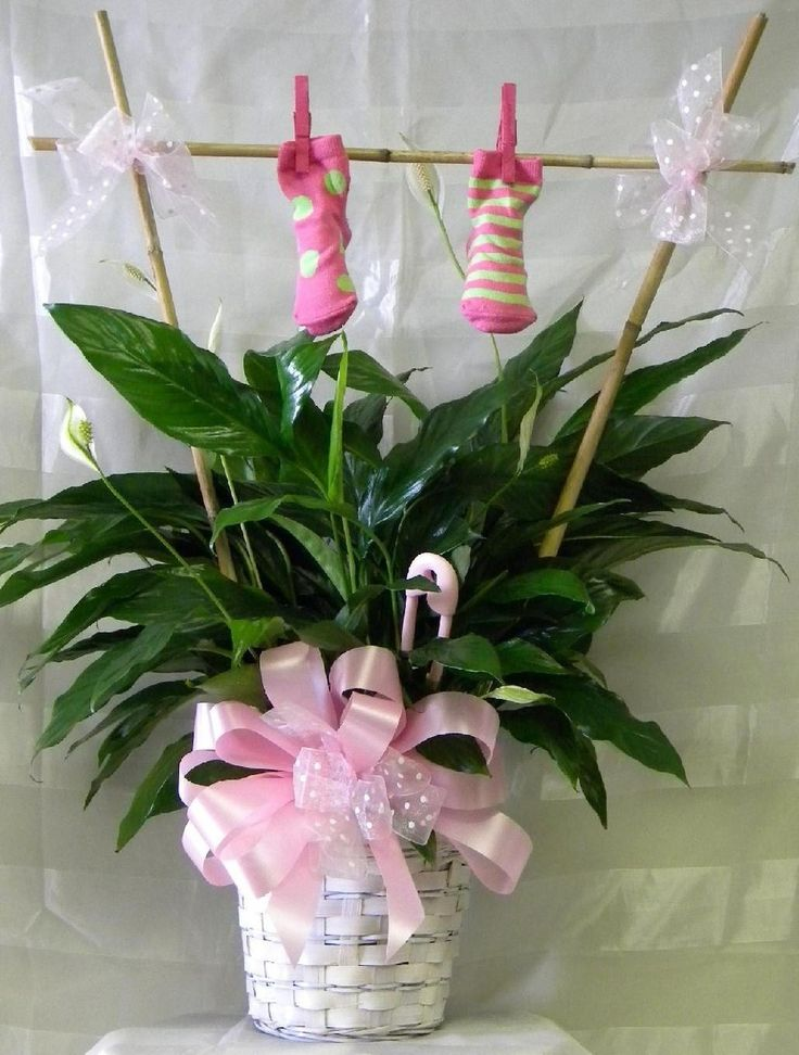 16 best new baby gift flower ideas images on pinterest baby new baby girl gift plant with clothes line negle Gallery