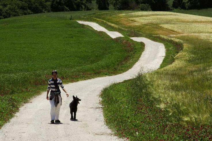 Walking along durum wheat-fields.  A joy for our souls! Passeggiando fra i campi di grano. Una gioia per l'anima!