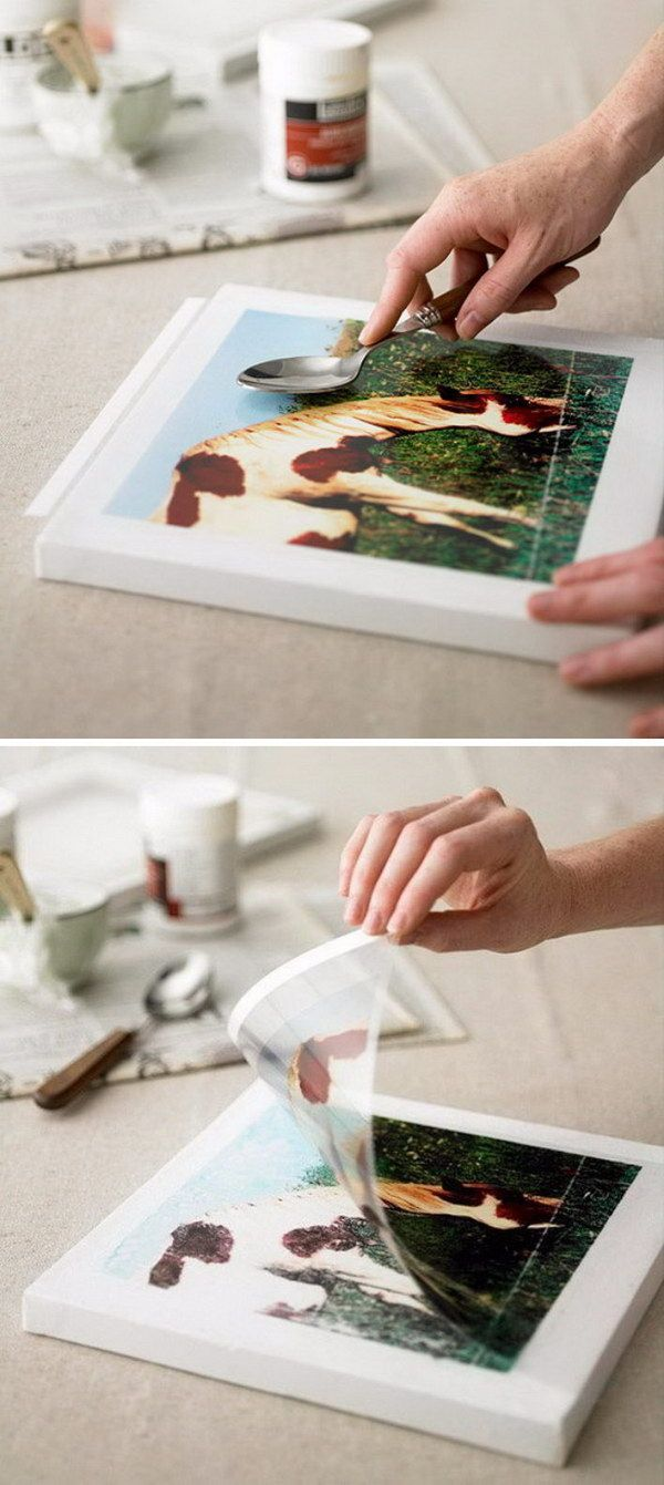 Nature-Inspired Photo Transfer Project.