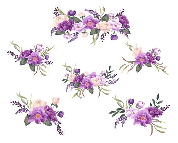 Purple Peonies Hand Painted Floral Clip Art Purple And Blush Etsy Floral Painting Purple Peonies Floral Watercolor