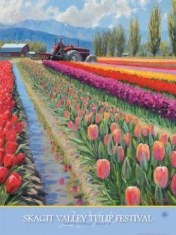 GO: Skagit Valley Tulip Festival April 1-30, 2014