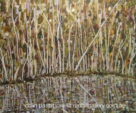 """Colin Passmore  Painting """"Reflections"""" Red Hill Gallery, Brisbane. redhillgallery.com.au"""
