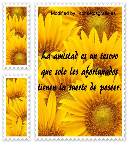 imagenes-amistad3.jpg (450×500)