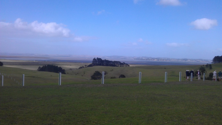 View from part of Gibbs Farm over the Kaipara Harbour.  Stunning!  http://www.matakanacountry.co.nz/home/home/ #matakana #New Zealand #travel