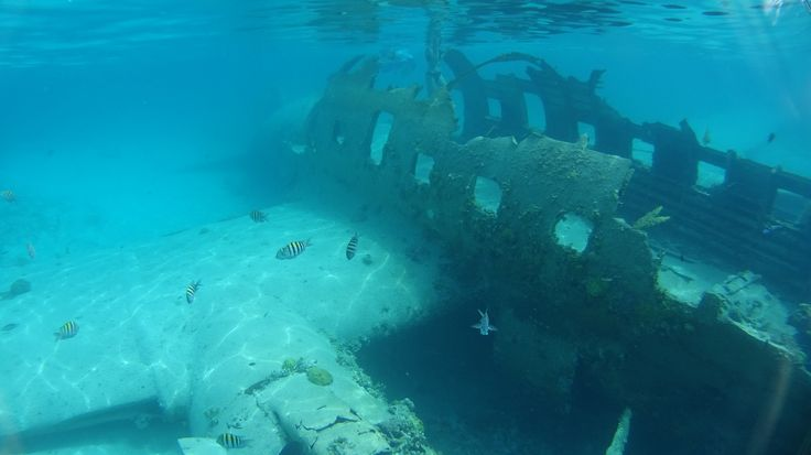 https://flic.kr/p/Mrocgt | Norman's Cay Bahamas | Sony ActionCam shot at Normans Cay C-46 wreck
