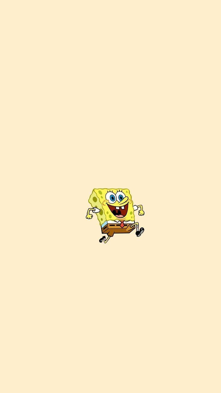 Sponge – #Sponge