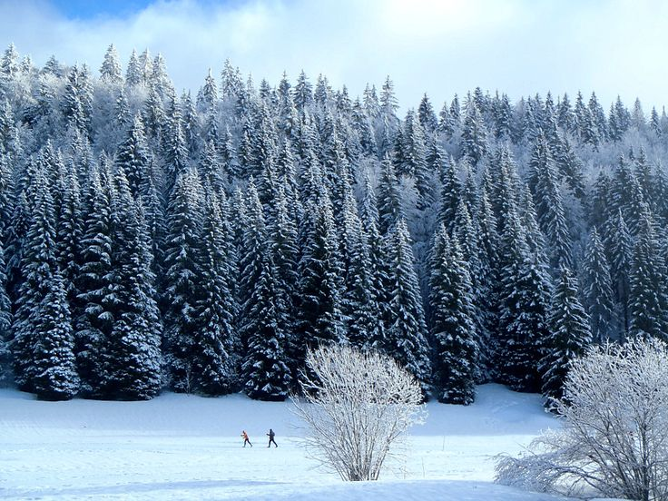Les Rousses: The Best of the Jura. At the heart of the Regional Natural Park of Haut-Jura, Les Rousses is composed of 4 villages: Les Rousses, Prémanon, Lamoura and Bois d'Amont. Intimate and family resort, its 220 km of slopes attract fades Nordic cross country skiing.