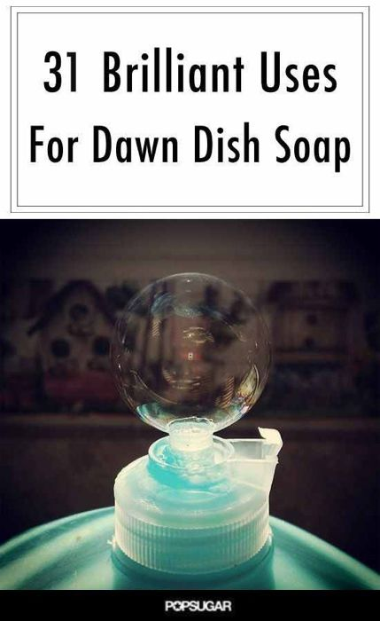 '31 Brilliant Uses For Dawn Dish Soap...!' (via POPSUGAR Smart Living)