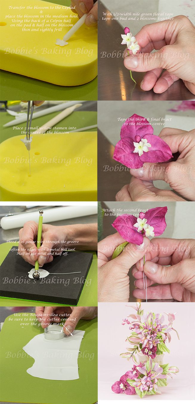 Step by step bougainvillea tutorial, check out the full tutorial: http://bobbiesbakingblog.com/blog/2013/07/17/sugar-paste-bougainvillea-tutorial/