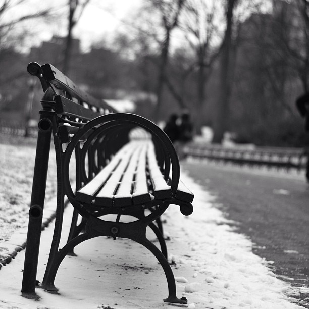 Your greatest masterpiece will emerge from your deepest torment. || #nyc #centralpark #streetphotography #nikond5100 #nikon #d5100 #50mm #Padgram