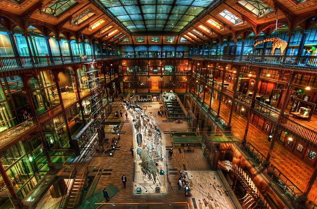 The Secret Workshop...  This is the Muséum national d'Histoire naturelle and is one of the least-known places in Paris. Everyone goes for the hot tourist spots, and this museum sounds rather boring, yes? But as you can see... au contraire!