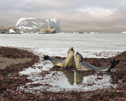 Drake Passage, Antartica
