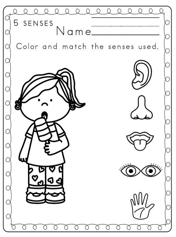 237 best the five senses images on pinterest the mailbox u2 and preschool. Black Bedroom Furniture Sets. Home Design Ideas