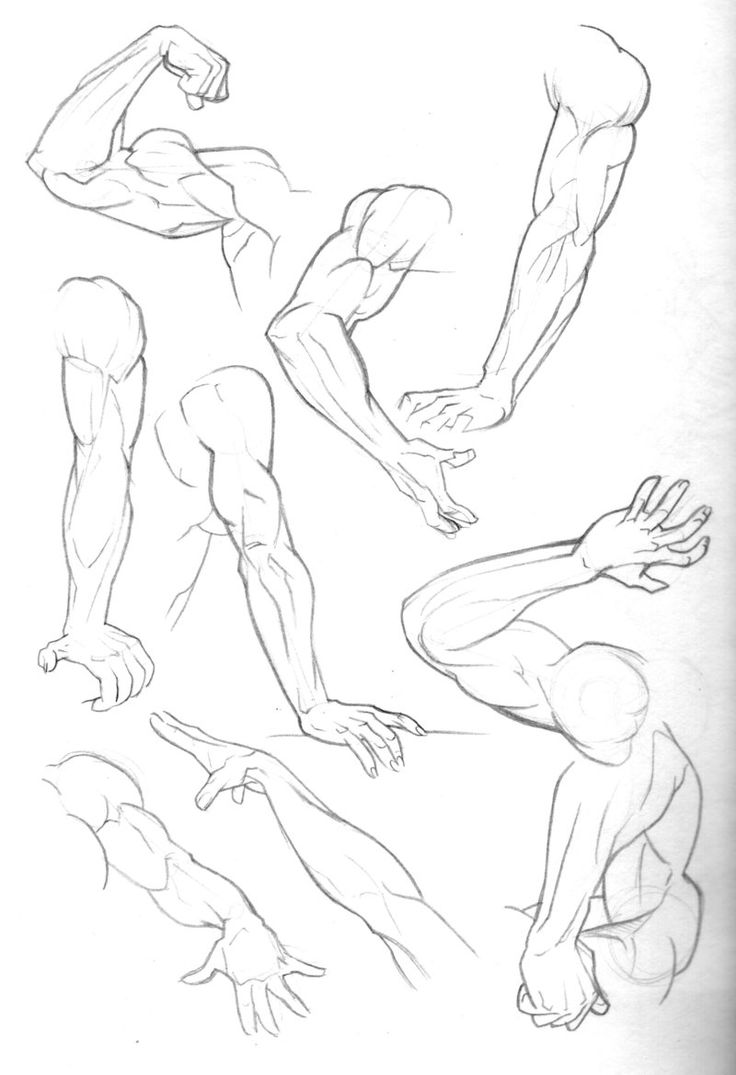Arm Poses - Gestures - Anatomical Study - Male and Female Body Study - Drawing Reference