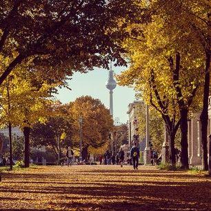Herbst im Friedrichshain/Autumn in Friedrichshain
