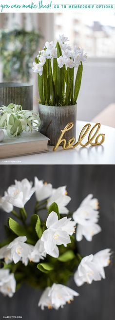 Create an arrangement of pretty potted crepe paper paperwhites - Lia Griffith - www.liagriffith.com #paper #paperart #paperflower #paperflowers #crepepaper #crepepaperrevival #crepepaperflowers #madewithlia