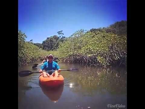 Passeio de Caiaque Rio da Barra - Trancoso - BA - Experiência Terravista! #adventure #tourism #visitbrazil #canoeing #riodabarra #trancoso #bahia #brazil #mtur #viagepelobrasil #obrasilpelosbrasileiros #terravistavilas #terravistabrasil