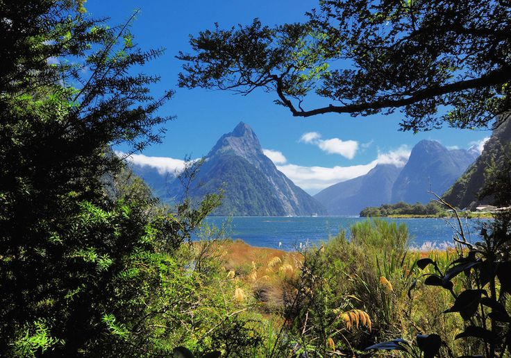 #1 of Tourist Attractions In New Zealand