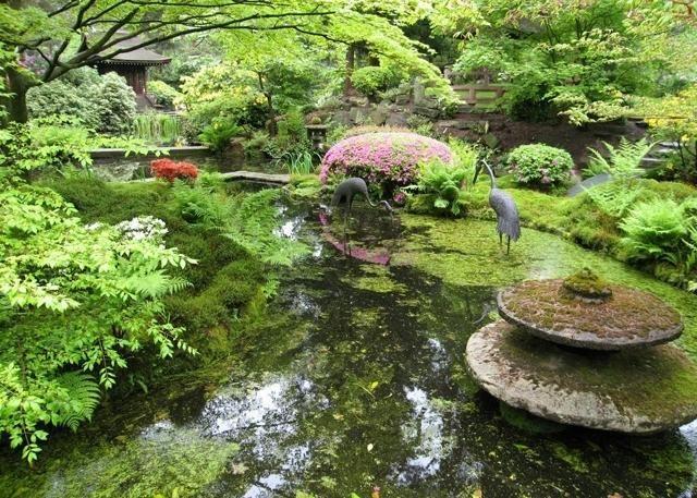 üppiger garten-mit teich-im asiatischen stil-wasserbrunnen deko-figuren