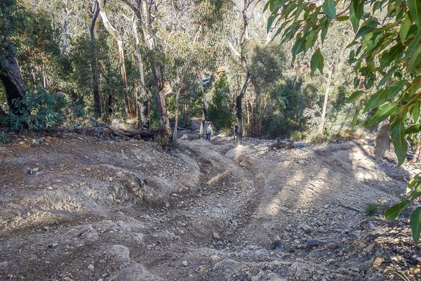 Perth 1 - 2 Day Trips: Julimar Forest - 4WD Tracks