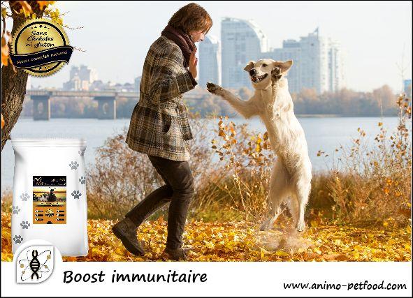 Votre chien vit sa vie à fond ?  Offrez-lui Fondant de canard, elle lui apportera toute l'énergie qu'il faut pour le garder actif !