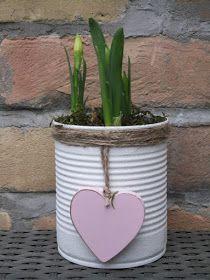 1000 ideen zu blumenzwiebeln auf pinterest blumenzwiebeln pflanzen blumenarrangements. Black Bedroom Furniture Sets. Home Design Ideas