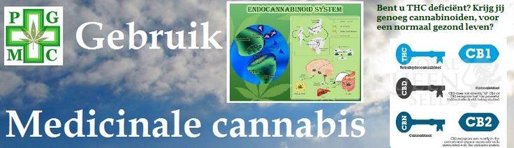Mensen kunnen cannabinoïden nodig hebben om een normaal gezond leven te hebben.  Krijg jij genoeg? Cannabinoïde stoffen zitten niet alleen in wietplanten.  Uw eigen lichaam produceert ze namelijk ook!    Het endocannabinoïde systeem (ECS) is een van de belangrijkste componenten van het menselijk lichaam. Het aantal fysiologische processen waar het verantwoordelijk voor is of betrokken bij is, is echt geweldig. De ECS speelt een integrale rol in de biologie en verschijnt op vele verrassende…