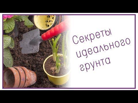 Секреты идеального грунта - YouTube
